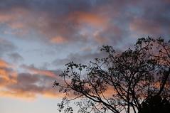 Sky at Whangarei