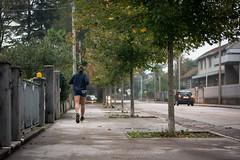 Run Baby Run (Link_3) Tags: street autumn trees sport alberi foot nikon strada run sweat autunno piedi corsa viale correre sudore d7100