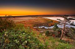 Fall Begins on Cape Cod Dapixara photography (Dapixara) Tags: autumn fall capecod massachusetts arts newengland foliage eastham dapixara