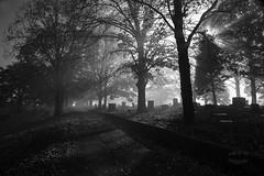 Lifting of the veil. (arti370) Tags: sun mist halloween cemetery graveyard fog dead death rays morningmist gost spook morningfog spooks