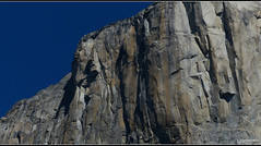 Climbers on Half Dome -Yosemite National Park (Contrails) Tags: california trees usa mountains nature sunshine landscape nationalpark nps bluesky sierra climbing yosemite wilderness climber elcapitan sierranevada yosemitevalley elcap rockformation granitemonolith rangeoflight