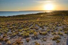 Algarve (David J. Julin) Tags: paisajes naturaleza beach portugal landscapes ngc baybridge algarve finegold bestnature beacheslandscapes davidjjulin