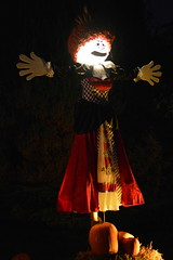 Queen of Hearts Scarecrow (CoasterMadMatt) Tags: pictures park greatbritain autumn england west english fall halloween up night dark season spectacular hearts photography lights nikon october time photos unitedkingdom britain united great scarecrow decoration illumination kingdom illuminated queen spooky safari event photographs gb british worcestershire lit midland scarecrows queenofhearts 2014 litup inthedark nikond3200 bewdley nighttimephotography westmidlandsafaripark themeing halloweenevent d3200 westmidlandsafariandleisurepark coastermadmatt spookyspectacular october2014 coastermadmattphotography