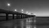 Manhattan Pier BW (tonybnla) Tags: pier manhattanpier manhattanbeachpier