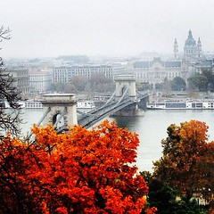 In love with Budapest (bj_chan91) Tags: trip travel bridge autumn vacation holiday fall amazing hungary budapest best wanderlust ungheria thebestisyettocome thisislife