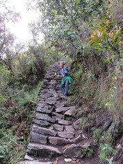 Machu Picchu-91