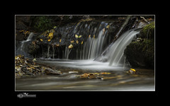 Stream_1682 (mikeyasp) Tags: autumn trees fall nature leaves landscape outdoors october rocks tennessee scenic rapids waterfalls streams smokeymountains