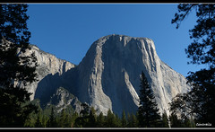 El Capitan -Yosemite National Park (Contrails) Tags: california trees usa mountains nature sunshine landscape nationalpark nps sierra yosemite wilderness elcapitan sierranevada yosemitevalley elcap rockformation granitemonolith rangeoflight