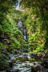 Aberfoyle Waterfall (Experimental), Scotland. (Simon_Baker2011) Tags: trees water aberfoyle thelodge queenelizabethforestpark watherfall