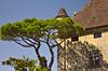 France - Yvoire (Crazyideas95) Tags: yvoire leman lake geneva france medival ancient history hautesavoie hot summer food family trip walk oldways olddays