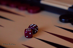 Life is like playing backgammon, you know the moves, you just need the right rolls (Mambo'Dan) Tags: backgammon silllife