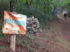 Eremo di Montecorona e il frutteto antico 2 ottobre 2016 (Katnis2016) Tags: eremomontecorona abbaziamontecorona montecorona umbertide umbria italy fruttetoantico sanlorenzo