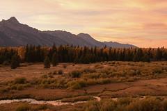 500_1541 (DianeBerky19) Tags: nikond500 sunset summitnatureworkshop 2016 jacksonholewyoming wy tetons mountains