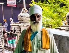 Kitchen worker, Golden Temple, Amritsar, Punjab, India (Lemmo2009) Tags: kitchenworker goldentemple amritsar punjab india
