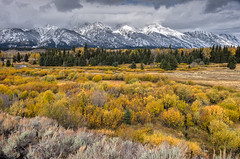 Any doubt? Tetons in Autumn (joycarl) Tags: tetons autumn golden mountains jacksonhole