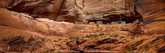 Another Ruin at Canyon De Chelley (JoelDeluxe) Tags: canyondechelley chelley tsyui navajonation nationalmonument canyon muertos cottowoods redrocks sandbed wash ruins az arizona hdr joeldeluxe