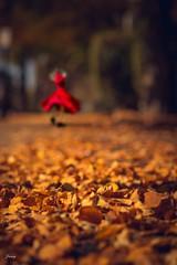 Dance With Autumn (Janey Song) Tags: dance autumn girl leaves reddress canon5dmarkiii zeissmakroplanart2100ze