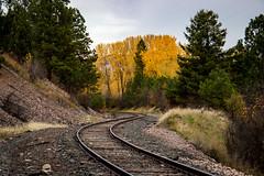 S-Curve (ebhenders) Tags: missoula montana lolo train tracks fall colors cottonwoods