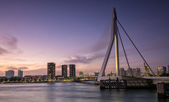 Last light (Lefers.) Tags: erasmusbrug rotterdam nederland maas brug bridge aida prima holland amerika lijn zwaan swan sunset nightphotography longexposure le fuji xt1 fujinon 1024mm ship dock clouds cityscape stadsgezicht raw filter zuidholland