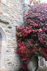 Autumn 2016-7 (Lynne 1212) Tags: buckland abbey autumn x100t