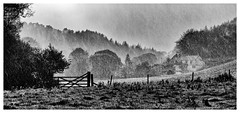 Sunshine And Raindrops. (john lunt) Tags: sunshine rain rural panoramic landscape autumn storm shower water raindrops autumnal weather gate house cottage fence field trees countryside country farm farming agriculture agricultural polveithan lanteglos fowey cornwall england uk britain black white blackandwhite bw toned monochrome john lunt johnlunt nikon d810 85mm f14 prime lens