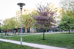 Parc de Bercy (georgemoga) Tags: alley bercy building flowers lamp paris park tree ledefrance france fr
