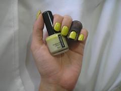 Desafio Musical - Cítrico (Andarella) (Daniela nailwear) Tags: desafiomusical citrico andarella chartreuse cremoso esmaltes mãofeita