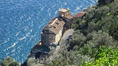 Between olive gardens and sea (Tery14) Tags: italy amalfi coast olive gardens sea costline