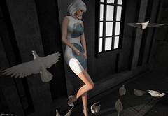 This strange feeling (Pilar Munro 2) Tags: aleutia eon doves pilarmunro wall peace thefrozenfair blogger blog window