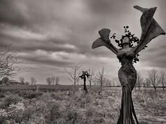 Nature (ancientlives) Tags: chicago illinois usa travel saturday december 2016 autumn nature statue art northerlyisland monochrome mono bw blackandwhite sepia landscape form shape adlerplanetarium museumcampus lakemichigan