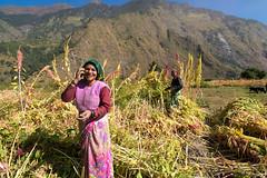 Life in Himalaya (AM Das) Tags: place people himalaya india village life