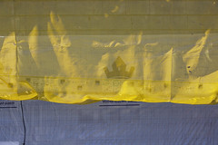 161014-7062-Netting (Sterne Slaven) Tags: plimothplantation roosters spiderwebs oldburialhill pilgrims clamdiggers sanddunes barnstable taunton salem lynn sexynude sunhalo fullmoon sterneslaven tide waves water fountain 1600s wampanoag mayflower pelt harbor chathamma seals ocean atlanticocean coastal newengland actors