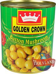 Button Mushroom 800gm (holylandgroup) Tags: canned fruit vegetable cannedfruit cannedvegetable nonveg jalapeno gherkins soups olives capers paneer cream pulps purees sweets juice readytoeat toothpicks aluminium pasta noodles macroni saladoil beverages nuts dryfruit syrups condiments herbs seasoning jams honey vinegars sauces ketchup spices ingredients