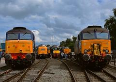 DRS Open Day, Gresty Bridge, Crewe. 23 07 2016 (pnb511) Tags: crewe drs directrailservices locomotive railway train engine workshop class57 class55 class40 class37 deltic