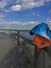 Life's Better In Boardshorts ~ So Go Hit The Beach Bro!! 🌊🏄 (tjrockstar7) Tags: billabong boardshorts beach bro