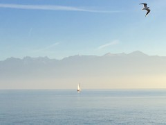 Peace in Pastel (Geolilli) Tags: iphone lake peace boat mountains lakescape switzerland sailing