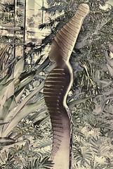 forbidden_fruit (gerhil) Tags: travel landscape garden figure backlight abstract interpretive autumn november2016 nikcolorefexpro4 outdoor woman symbolic arteconceptual