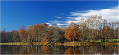 11 26 16_0497 (IDM:23) Tags: autumn beautiful blue creuse countryside country colourful etang france fall foliage forest green grass k5 limousin landscape lake morning nature november outdoor pretty peaceful pentax rural reflections sunny sky trees tranquil view water woods
