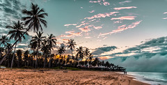 And after the storm (The Sergeant AGS (A city guy)) Tags: laaltagracia rdominicana beach beachscape skies seashore coconuttree storm sand puntacana walking waterways clouds exploration travelling
