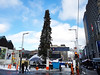 Not just a piece of crap Christmas tree, OUR piece of crap Christmas tree (Exile on Ontario St) Tags: ugly montreal christmas tree sapin noël laid sad sapinlaid fir arbre canadiantire laughingstock laughing stock risée ridicule centreville downtown honte embarrassment shame city mocked deniscoderre denis coderre sapinmtl uglytree mayor canadian tire marchédenoël market marché xmas holidays fêtes big high charliebrown beautiful charlie brown laugh mock large grand haut baumier balsam joke jokes baumierviralrockefellercentersprucedecorationtriangletaxpayersmarketingployplace des arts place scorn pda québec horreur awful ugliness laideur terrible quebec mistake noel