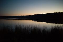 L1000266 (David Stebbing) Tags: color flickr sunrise