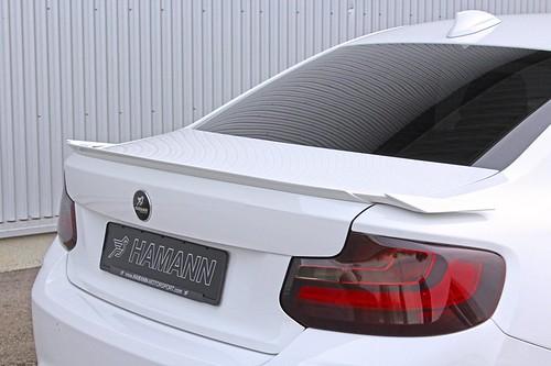 Hamann BMW M2
