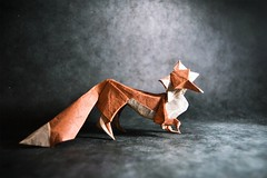 I Give these Awesome Origami Animals My Seal of Approval (Origami.me) Tags: fox animals origami paper papercraft craft diy fold folding