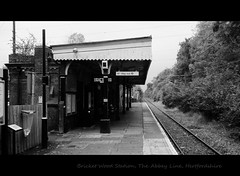 Way Out To The Wood (dhcomet) Tags: transport platform railway hertfordshire midland herts stattion bricketwood abbeyline