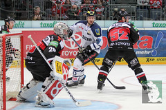 "DEL15 Kölner Haie vs. ERC Ingolstadt 19.10.2014 058.jpg • <a style=""font-size:0.8em;"" href=""http://www.flickr.com/photos/64442770@N03/15002007724/"" target=""_blank"">View on Flickr</a>"