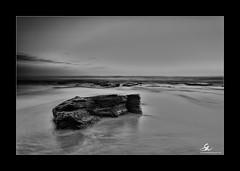 Bungan (Seany99) Tags: bw beach rock sunrise sydney australia nsw bungan sydneysnorthernbeaches niksilverefexpro2