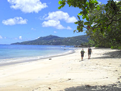 Walk around the beach (Imthearsonist) Tags: trees beach nature sand paradise tour walk seychelles vacations beautifulbeach sunnyday destinations clearskies beauvallon costacruises