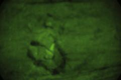 Marines conduct motorized assault training (15th Marine Expeditionary Unit) Tags: california india usmc us marine unitedstates military assault meu operations marines pao raid 31 deploy marinecorps 3rd deployment blt raids unitedstatesmarinecorps battalion camppendleton combatcamera 15thmeu publicaffairs comcam indiacompany battalionlandingteam marineexpeditionaryunit magtf 15thmarineexpeditionaryunit 3rdbattalion1stmarines marineairgroundtaskforce 1stmarineregiment motorizedraid commandelement