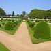 France-001648 - Diane's Garden