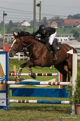 DSC05917_s (AndiP66) Tags: horse oktober macro sports sport schweiz switzerland mark sony luzern sp ii di if alpha tamron concours 77 pferd 70200 equestrian derby f28 ld horsejumping 70200mm wettbewerb 2014 springen eschenbach kantonsolothurn inwil reithof springreiten cantonsolothurn stleodegar andreaspeters pferdespringen 77m2 a77ii ilca77m2 77ii slta77ii